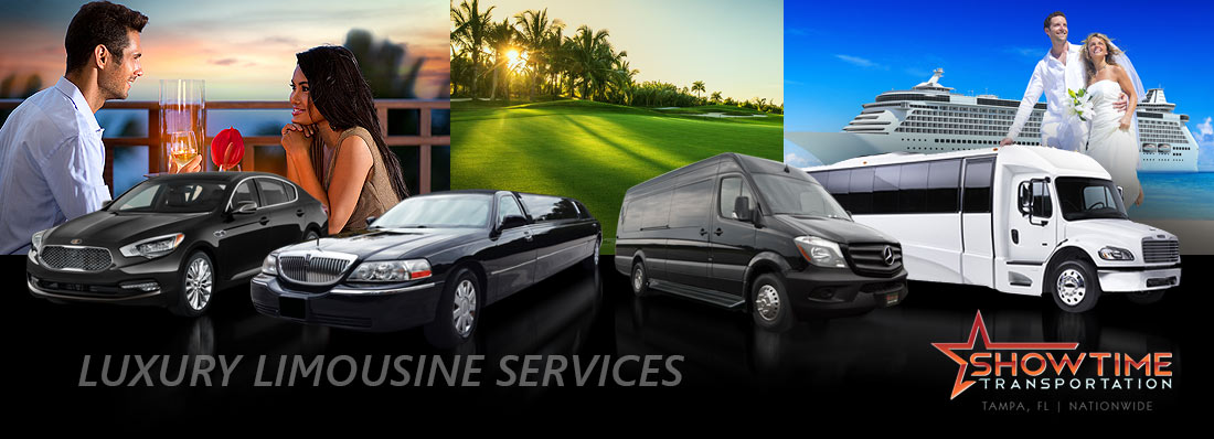 Palm Harbor Limo Service Specialists